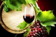 Dani vina i sajam vina u Paraćinu