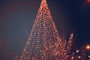 Tradicionalna novogodišnja prodaja u Paraćinu